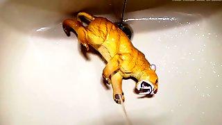 Sabertooth figure gets a golden shower