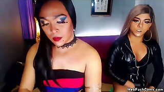 Two shemale wanking on webcam show